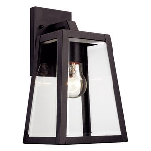 Wyndham 1-Light Outdoor Wall Lantern By Darby Home Co Outdoor Lighting