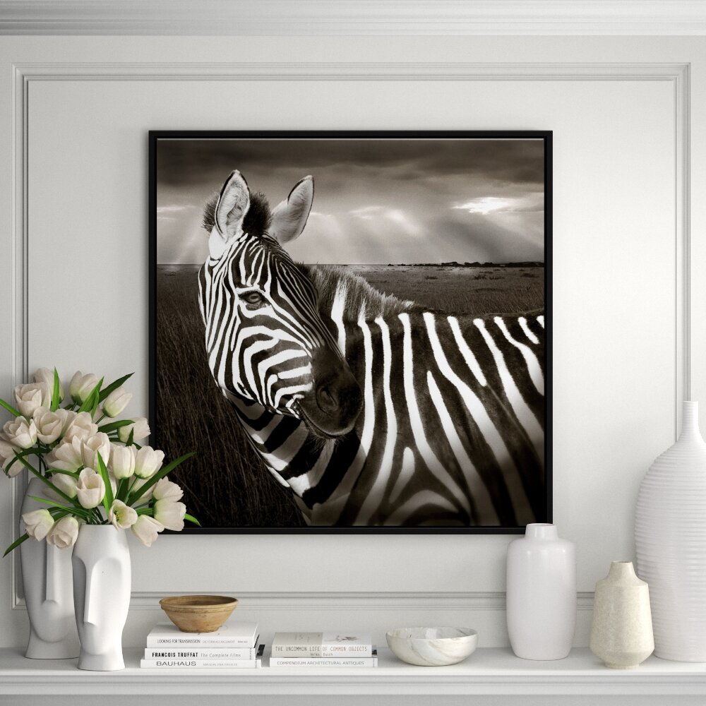 Jbass Grand Gallery Collection Zebra In Kenya Framed Graphic Art On Canvas Perigold