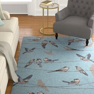 Check Out Edinburgh Handmade Blue Indoor/Outdoor Area Rug Reviews