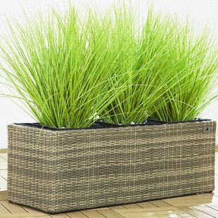 Collazo Rattan Self-Watering Planter Box Image