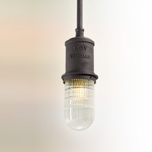 17 Stories Odelia Industrial 1-Light Bulb Pendant