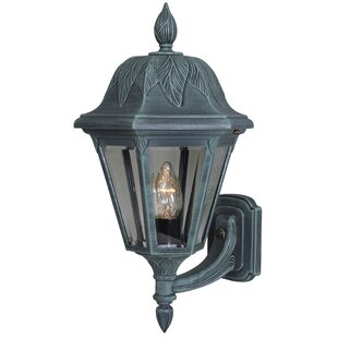 Floral 1-Light Outdoor Sconce