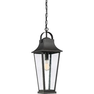 Endicott 1-Light Outdoor Hanging Lantern