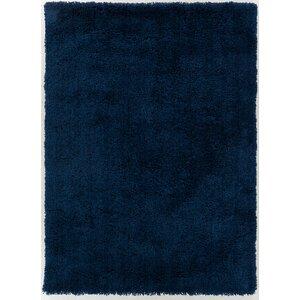 Hallum Midnight Blue Area Rug