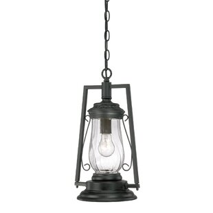 Lynda 1-Light Outdoor Hanging Lantern