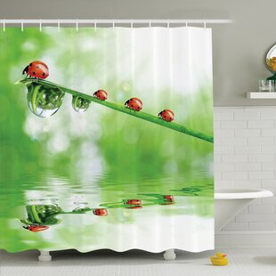 Best Reviews Nature Ladybugs on Stream Sun Shower Curtain Set By Ambesonne