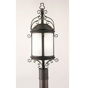 Theodore 60W Lantern Head by Darby Home Co