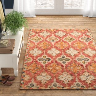 Farmhouse Rustic Red Area Rugs Birch Lane