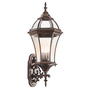 Alcott Hill Darrell 3-Light Outdoor Sconce