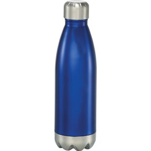Charles Insulated Hot or Cold 17 oz. Stainless Steel Water Bottle