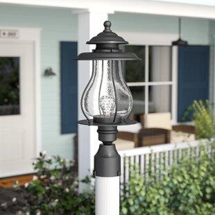 Beachcrest Home Kentwood Outdoor 1-Light Lantern Head