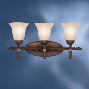 Darby Home Co Bafford 3-Light Vanity Light