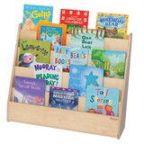 4 Compartment Book Display