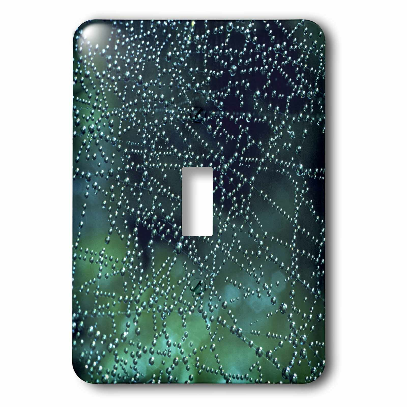 3drose Dew Drops On Spider Web 1 Gang Toggle Light Switch Wall Plate Wayfair