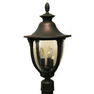 Alcott Hill Phillipstown 4-Light Lantern Head
