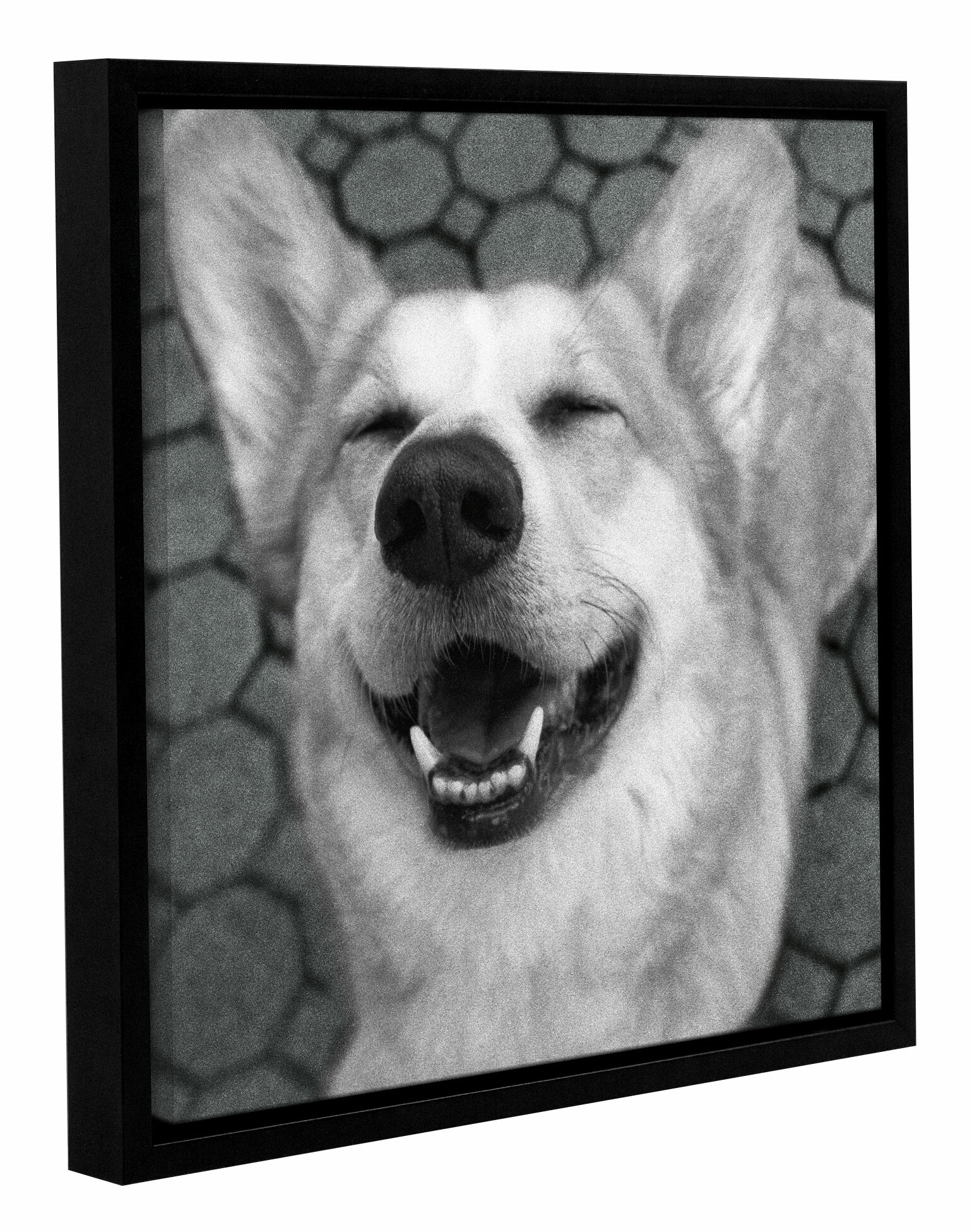 Red Barrel Studio Smile And The World Smiles With You Crop Dark Framed Photographic Print On Wrapped Canvas Wayfair
