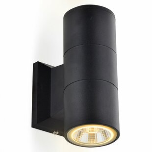 Bluffs LED Outdoor Wall Light By Sol 72 Outdoor