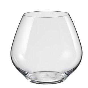 Saloma 20 oz. Stemless Wine Glass (Set of 6)