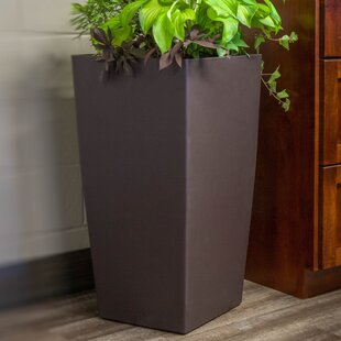 Wrought Studio Byrum Self-Watering Plastic Pot Planter