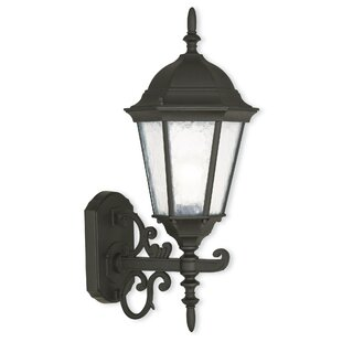 Darby Home Co Christian 1-Light Outdoor Wall Lantern