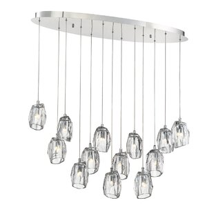 Orren Ellis Samaniego 13-Light Pendant