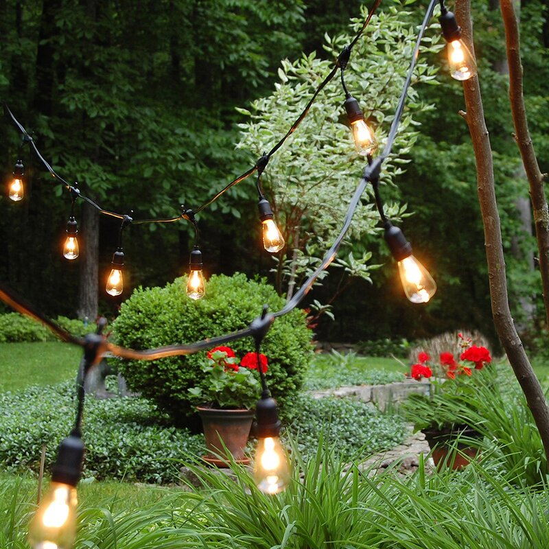LumaBase Edison Style Electric Globe String Lights Reviews Wayfair