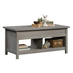 Tilden Lift Top Coffee Table with Storage by Greyleigh