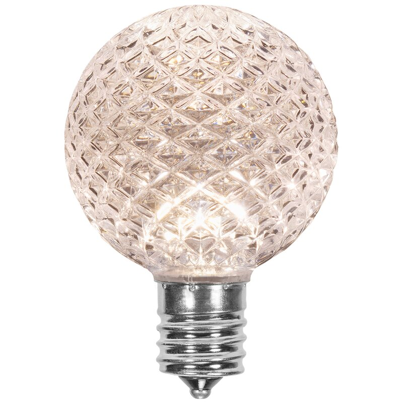 Wintergreen Lighting 25 Watt Equivalent 130 Volt Light Bulb Wayfair