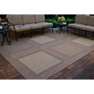 Barhill Large Boxes Brown/Natural Indoor/Outdoor Area Rug