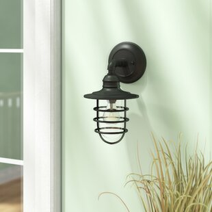 Finnigan 1-Light Outdoor Barn Light