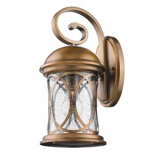 Glaucia Elegant 1-Light Outdoor Wall Lantern