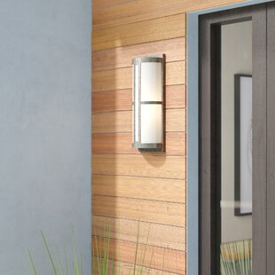 Chadbury 1-Light Outdoor Sconce