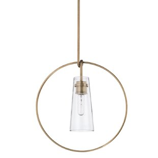 Baran 1-Light Novelty Pendant by George Oliver