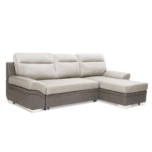 Delano Sleeper Sofa Bed By Orren Ellis