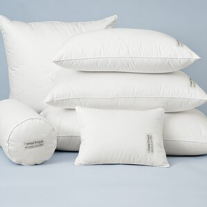 100% Down European Pillow by Warm Things