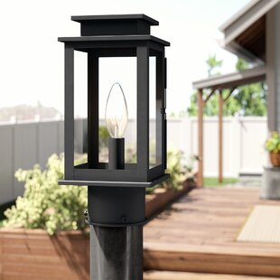 Laurel Foundry Modern Farmhouse Emma Outdoor 1-Light Lantern Head