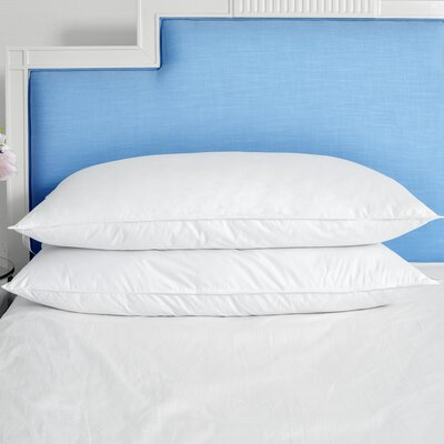 Bed Pillows You Ll Love In 2019 Wayfair