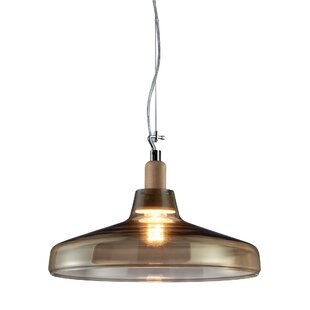 Orren Ellis Dressler 1-Light Dome Pendant