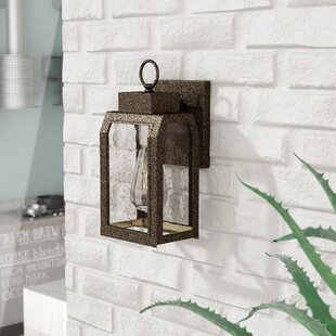 Abram 1-Light Outdoor Wall Lantern by Williston Forge