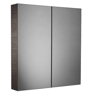 Vidal 60cm X 65cm Surface Mount Mirror Cabinet By Mercury Row