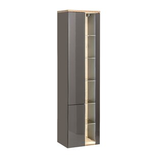 Pihu 45cm X 170cm Mirrored Wall Mounted Cabinet By Mercury Row