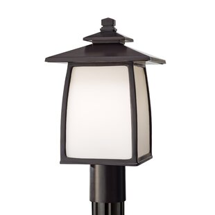 Affordable Price Yucca 1-Light LED Lantern Head By Loon Peak