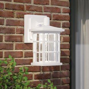 Brayden Studio Lockett 1-Light Outdoor Wall Lantern