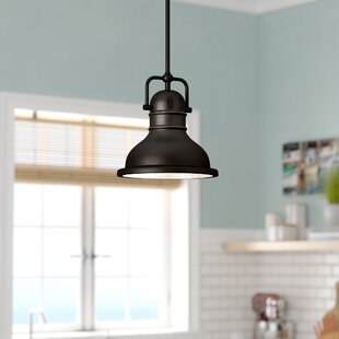 Andover Mills Merrick 1-Light Dome Pendant