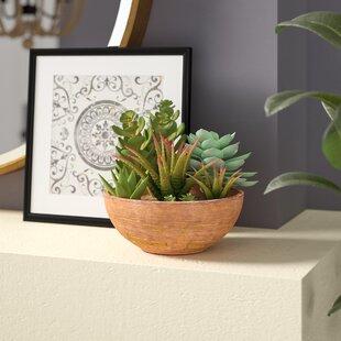 Desktop Faux Succulent Plant In Round Ceramic Vase
