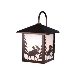 Find Josefina Rustic 1-Light 100W Outdoor Wall Lantern By Loon Peak