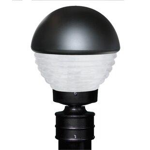Latitude Run Donnie Hand-Painted 1-Light Lantern Head