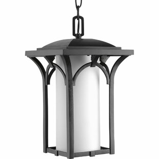 Deaver 1-Light Hanging Lantern