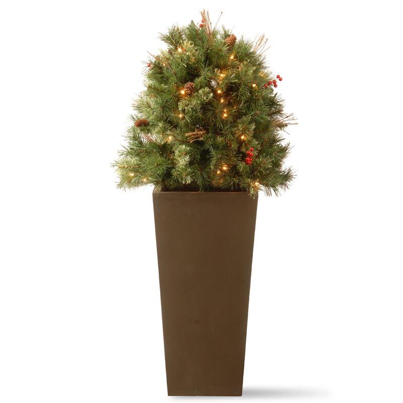 The Holiday Aisle Glistening Porch Bush 4' Pine Artificial