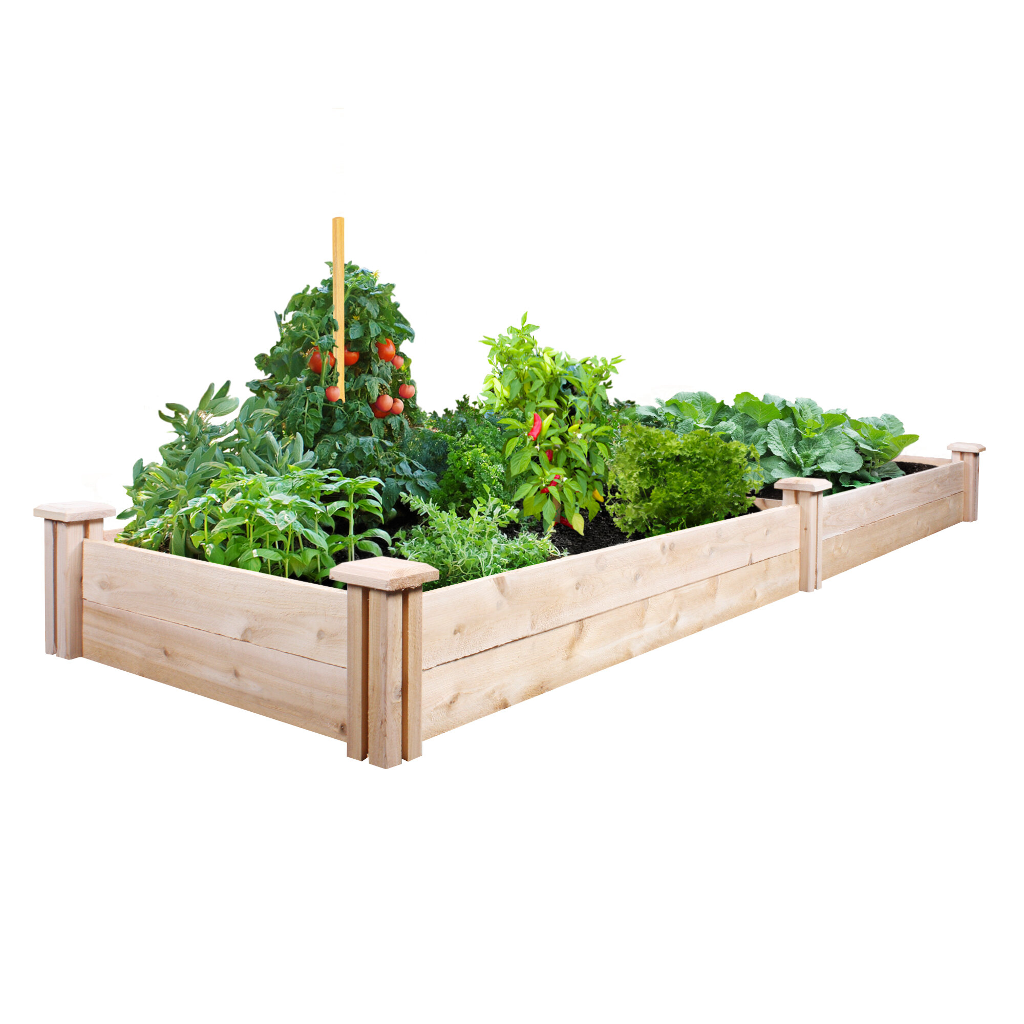 garden raised wayfair pdx ft x greenes bed outdoor fence cedar reviews